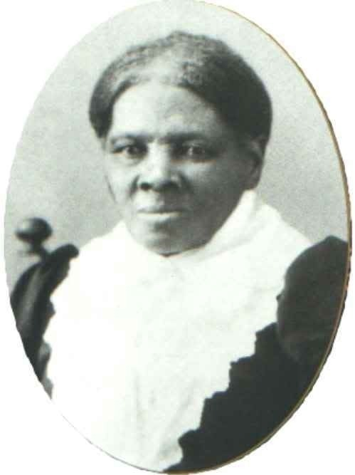 Harriet Tubman Fight for Freedom