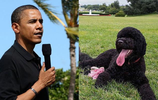 obama-sunny