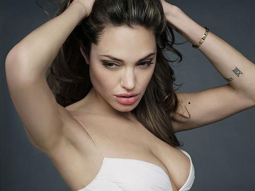 Angelina Jolie Bra